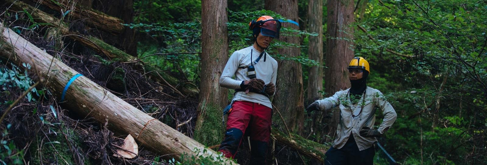トータル林業